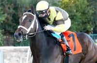 Caddo River joins Derby trail with dominant Oaklawn win