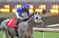 Here are Cox's plans for his big 3 Kentucky Derby hopefuls