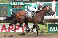 Derby runner-up Mandaloun holds on to win the Pegasus