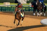 Preakness analysis: Baffert pair looks vulnerable