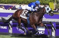 Breeders' Cup Mile: Latest odds and preview