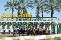 First Look: 20 graded stakes, 9 Breeders' Cup qualifiers on tap