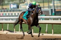 While spot secure, Dream Shake could bypass Kentucky Derby