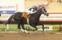 Saturday Plays: Top picks for Keeneland, Oaklawn, Santa Anita