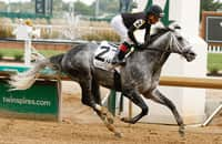 Breeders' Cup 2021: Which favorites are beatable on dirt?
