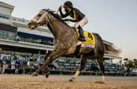 Dominant Knicks Go takes Pegasus World Cup gate-to-wire