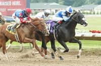 Is Masqueparade up to Essential Quality in Jim Dandy?