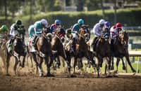 First Look: 7 graded stakes on tap this weekend