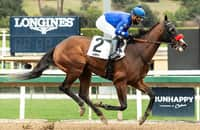 The Great One targets San Felipe after 14-length romp