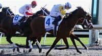 Java's War and jockey Julien Leparoux win the Toyota Blue Grass at Keeneland for owner Charles Fipke and trainer Kenneth McPeek; 04-13-13.
