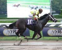 Sound Of Freedom winning a Maiden Special Weight at Belmont Park with John Velazquez in the irons.