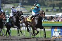 Apr 4, 2009: Pioneerof the Nile under Garret Gomez wins the Santa Anita Derby, Arcadia, California.