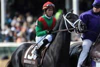 November 6, 2010: Pluck, ridden by Garrett Gomez and trained by Todd A. Pletcher win the Breeders Cup Juvenile Turf at Churchill Downs in Louisville, KY..