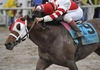 Friesan Fire wins Louisiana Derby