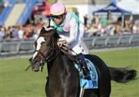 09 September 20: Ventura, ridden by Garrett Gomez and trained by Bobby Frankel, wins the grade 1 Woodbine Mile Stakes for three year olds and upward at Woodbine Racetrack in Rexdale, Ontario.