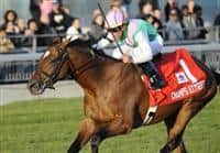 Champs Elysees, ridden by Garrett Gomez and trained by Robert Frankel, wins the grade 1 Canadian International Stakes for three year olds and upward at Woodbine Racetrack in Rexdale, Ontario.