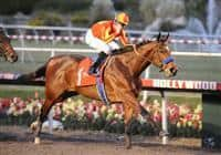09 December 19: Lookin at Lucky (no. 1), ridden by Garrett Gomez and trained by Bob Baffert, wins the 29th running of the grade 1 CashCall Futurity Stakes for two year olds at Hollywood Park in Inglewood, California.