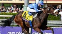 Nov. 02, 2012 - Arcadia, California, U.S - Flotilla (FR) ridden by Christophe P. Lemaire and trained by Mikel Delzangles, wins the Breeders' Cup Juvenile Fillies Turf (Grade I) at Santa Anita Park in Arcadia, CA.