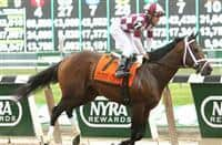 Forty Tales with Joel Rosario win the 29th running of the Grade II Woody Stevens Stakes for 3-year olds, going 7 furlongs, at Belmont Park. Trainer Todd Pletcher. Owners Perretti Racing Stable, LLC