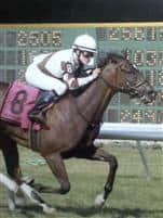 Two Notch winning the Continental Mile