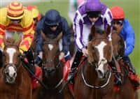 Winning the 2013 St Leger Stakes