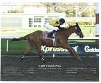 /horse/Lady Fairbanks