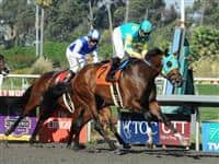 October 2, 2010.Jaycito ridden by Mike Smith wins the The Norfolk Stakes at Hollywood Park, Inglewood, CA._Cynthia Lum/Eclipse Sportswire