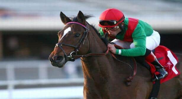 Gypsy's Warning Goes After Repeat in Matriarch