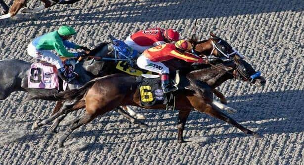 The Key To Winning at Del Mar: Polytrack Sires