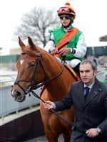 /horse/Miss Valentine
