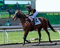 Hootenanny after winning a Maiden Special Weight race at Keeneland.