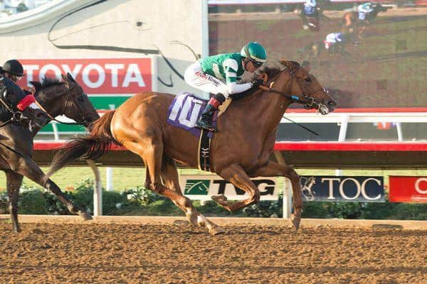Accelerate tries for first graded stakes score in Los Alamitos Derby