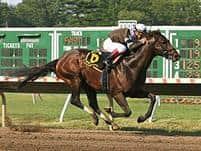 Afleet Express captures the 2010 Pegasus