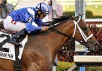 Albertus Maximus captures the 2009 Donn Handicap