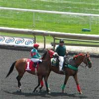 Before the 1st race at Arlington on 8/13/11