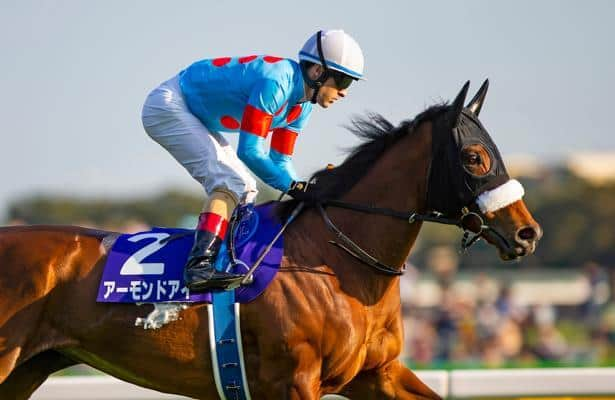 Yasuda kinen betting sites norjalainen mies bitcoins
