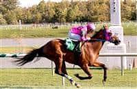 Amelia's Wild Ride wins at LRL (10-4-14)