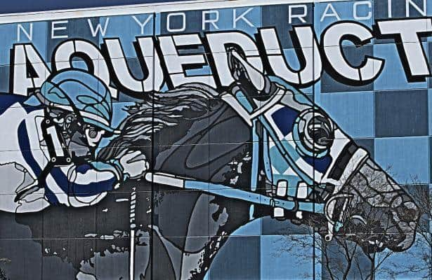 Respect For All, formerly named Grape Soda, entered Sunday at Aqueduct