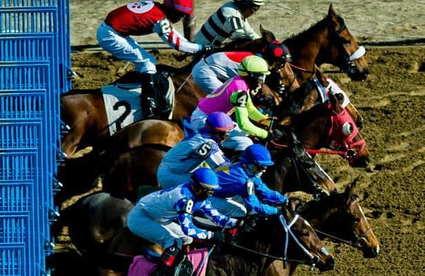 Aqueduct to host 42 stakes in winter, spring meets