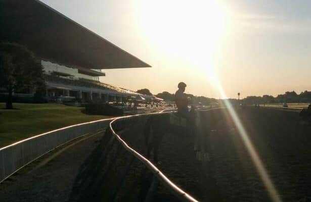 In their own words: 6 regulars say farewell to Arlington Park