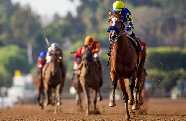 Head to Head: Handicapping the 2020 Haskell Stakes