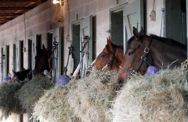 In the ol' muck pit: On the Horseracing Integrity Act of 2017
