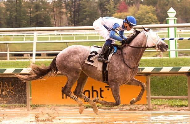 Weekend Watch: Kentucky Derby trail visits Remington Park