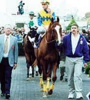 /horse/Bet On Sunshine