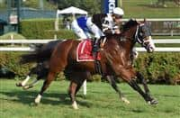 Blind Ambition wins 2017 Quick Call