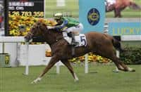 Blizzard wins G3 Chinese Club Challenge Cup Handicap (1400m) at Sha Tin (1-1-17)