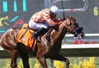 Briecat takes the 2009 Adoration Stakes at Del Mar