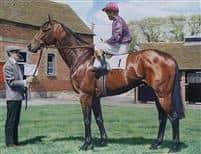 /horse/Brigadier Gerard