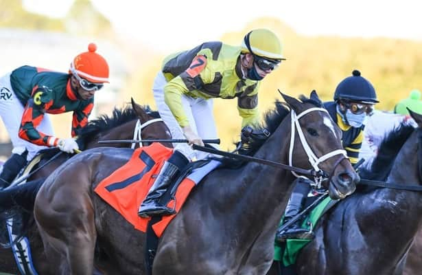 Caddo River drops out of Kentucky Derby field