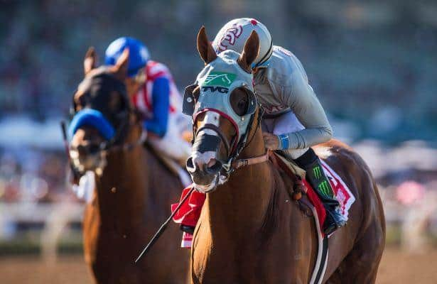 California Chrome's still racing, but only in his dreams